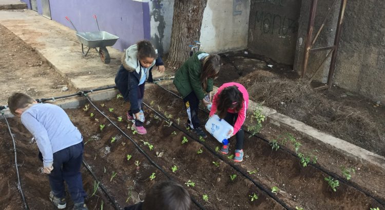 Proyecto de Ecología y Sostenibilidad en Primaria e Infantil