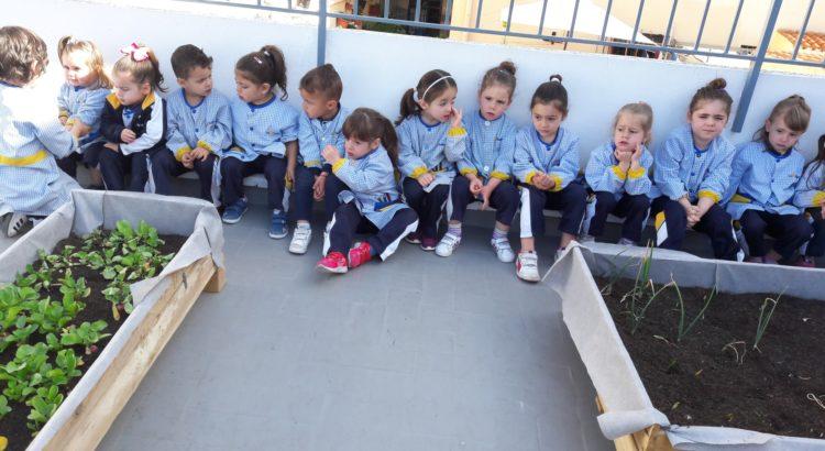 Nueva cosecha en el huerto escolar de la Escuela Infantil Desamparados
