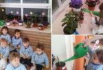 El pequeño jardín de infantil