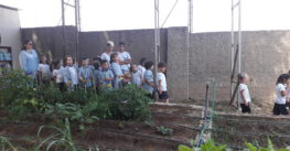 Visita de los alumnos de 2º Ciclo de Infantil al huerto escolar de la Escuela Profesional