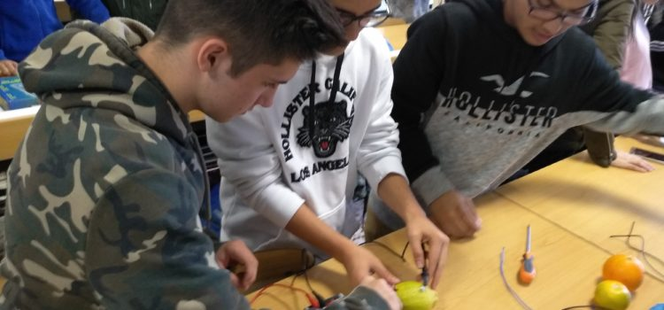 Alumnos de 4º de ESO realizan prácticas en FP