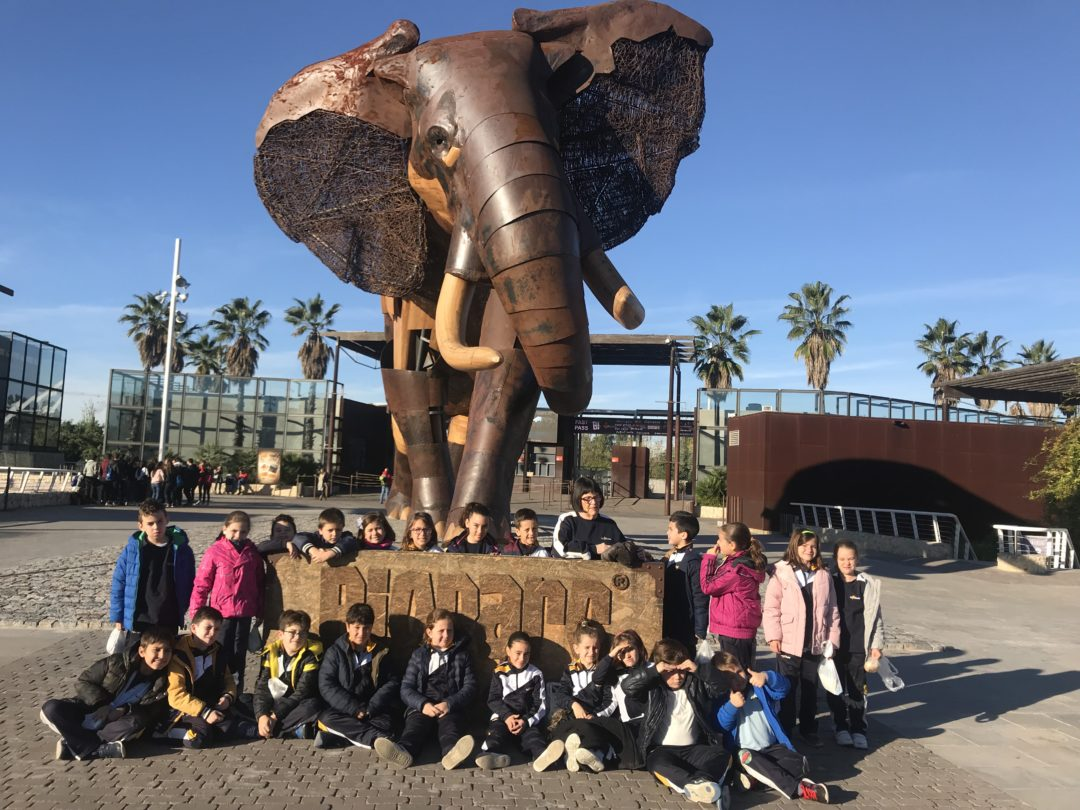 Alumnos de primaria visitan Bioparc