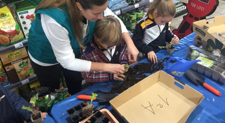 Los alumnos de 1º de primaria visitan Verdecora