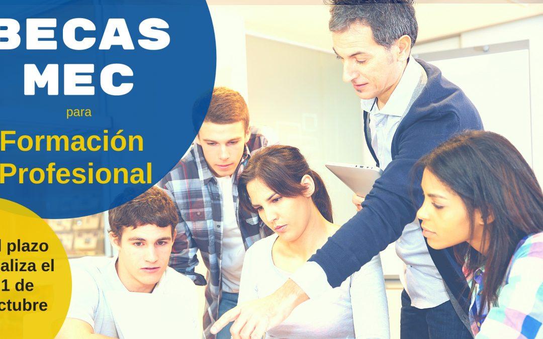 Becas para estudiantes de Formación Profesional