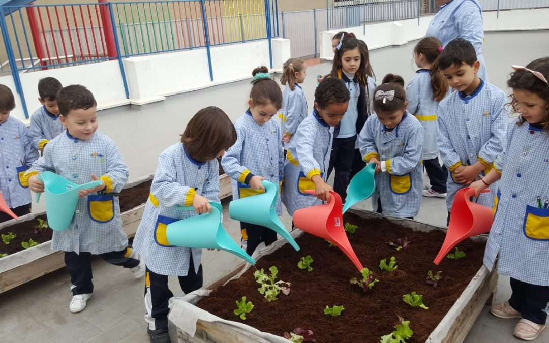 Infantil empieza a trabajar en el huerto escolar